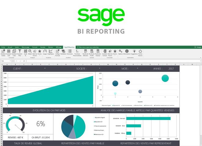 Sage BI reporting